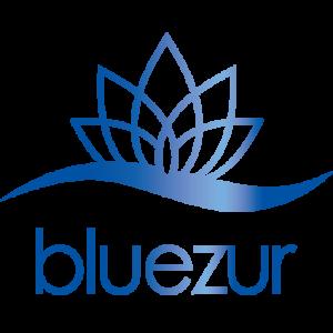 bluezurアイコン